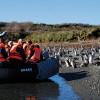 Crucero Australis: Punta Arenas / Punta Arenas