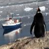Crucero Clásica Antártida